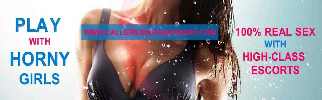 Call Girls Services chandigarh